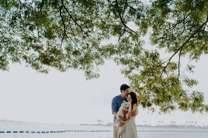 Engagement - Derek & Eilis by Smittenpixels Photography - 007