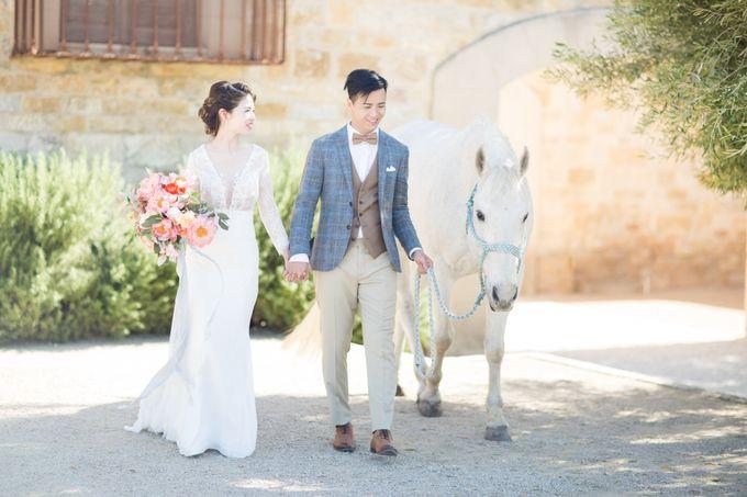 Mandy and Macks Wedding by Katie McGihon Photography - 049