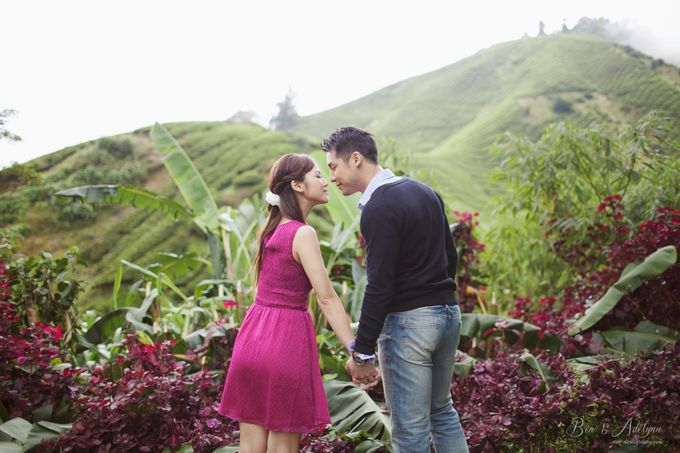 The best of  Pre-Wedding in Cameron Highland by maxtography - 038