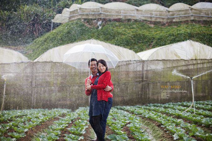 The best of  Pre-Wedding in Cameron Highland by maxtography - 039