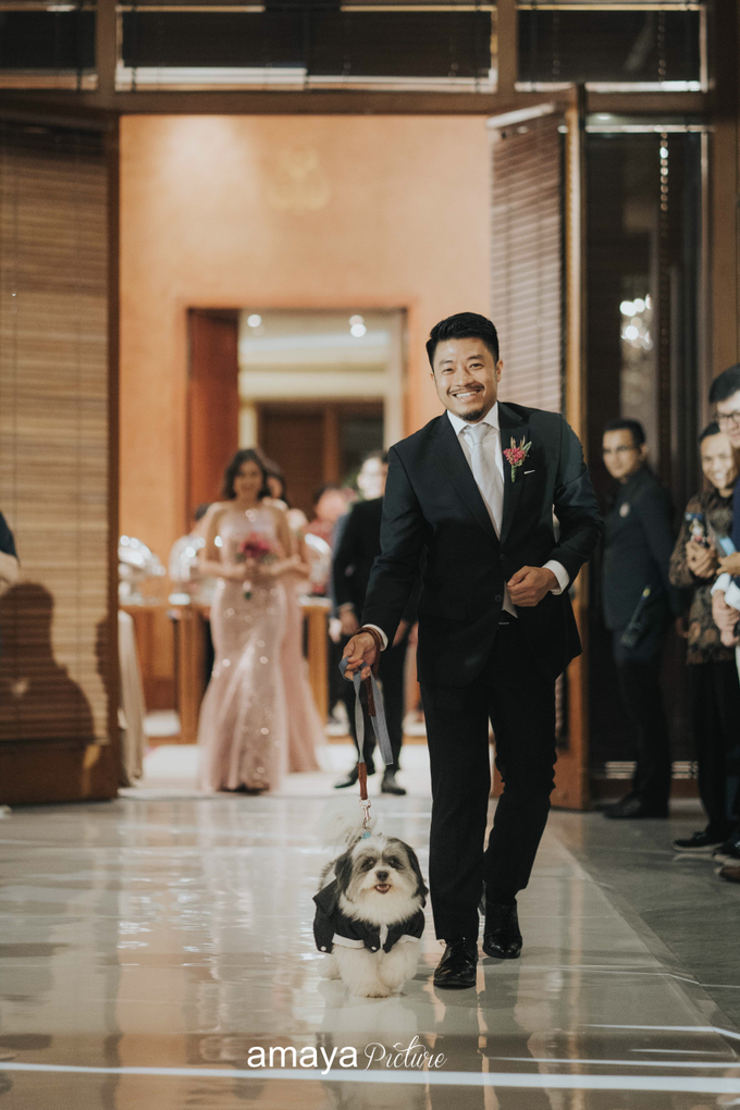 Wedding of Stephen and Stella by Brillington & Brothers - 027