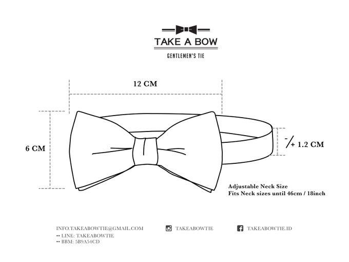 Pre-Tied Bow Tie by Take A Bow Tie - 001