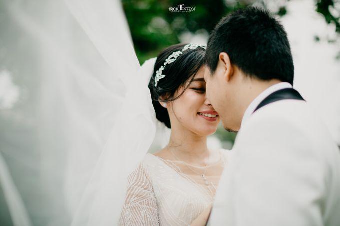 James & Tata    Holy Matrimony by Trickeffect - 015