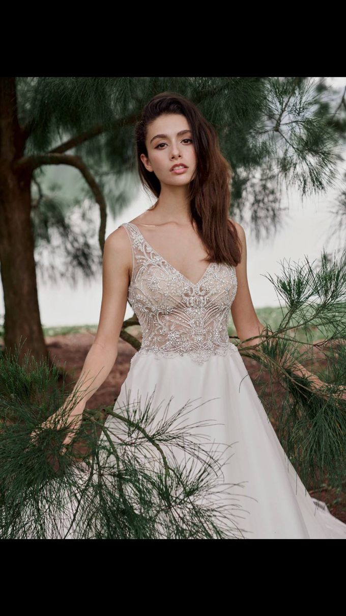 Anabelleunice Collection by The Gown Warehouse - 001