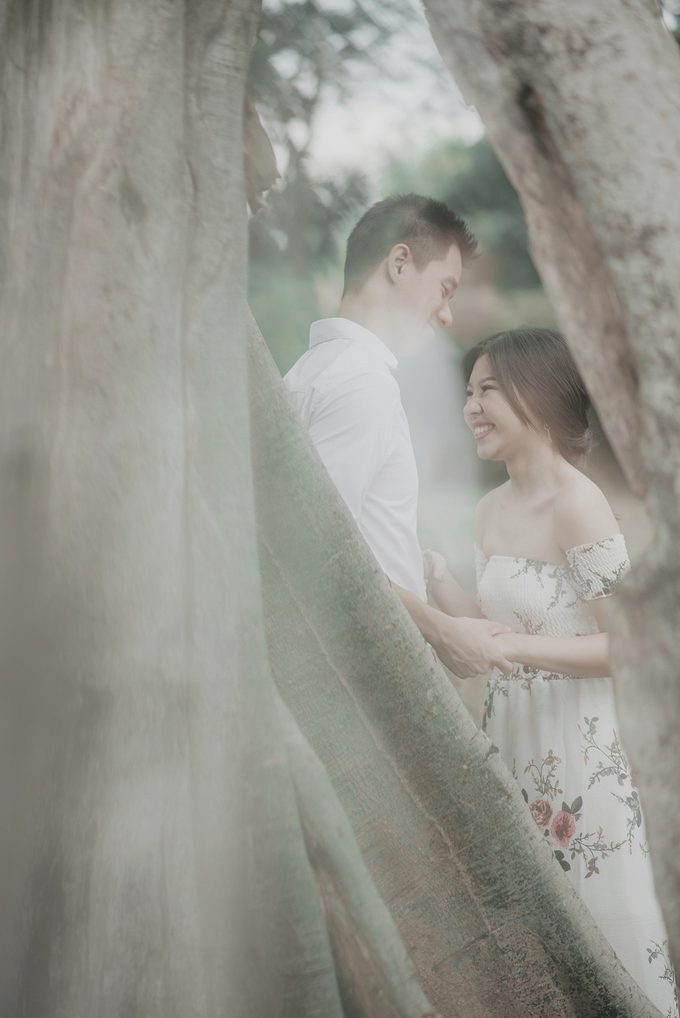 Under The Tree by unravel photograph - 003