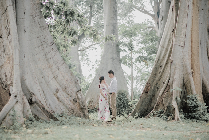 Under The Tree by unravel photograph - 004