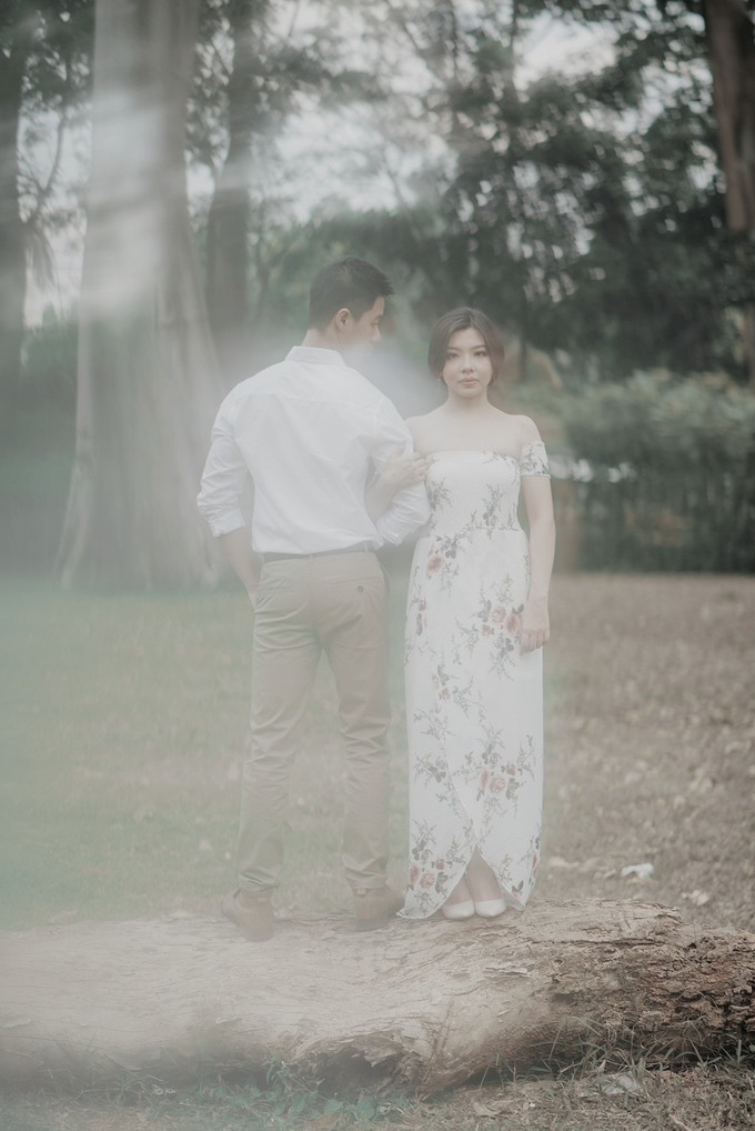 Under The Tree by unravel photograph - 002