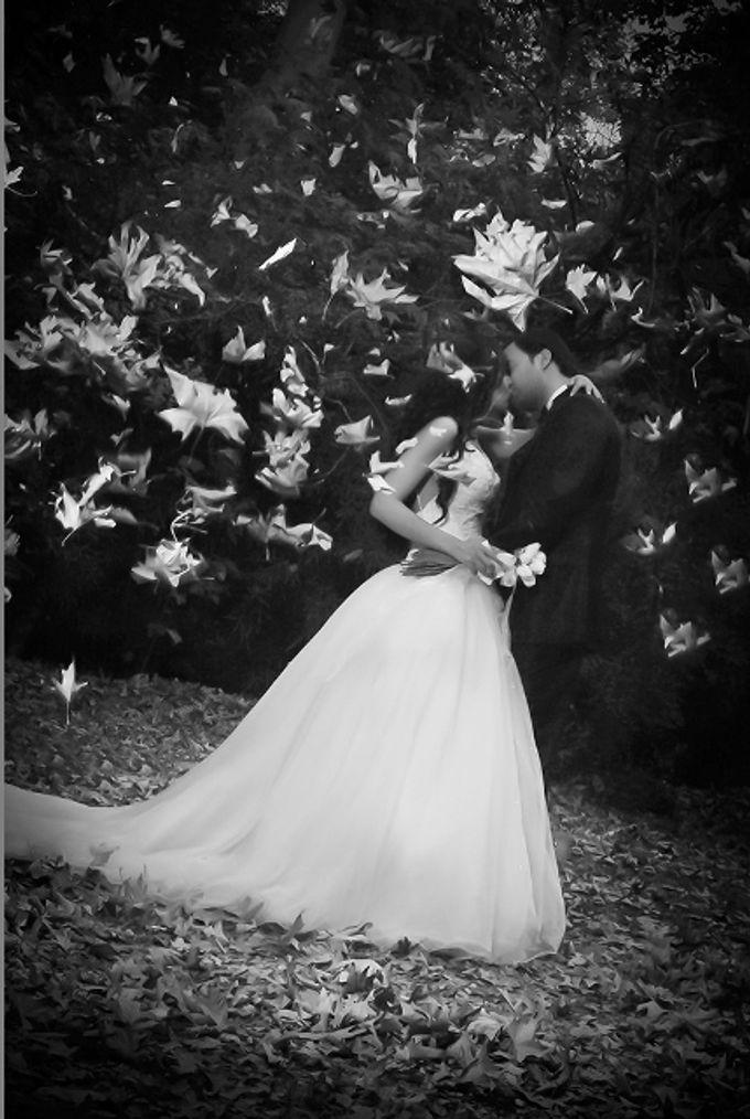 Wedding Dreams by Amirazariphotography - 016
