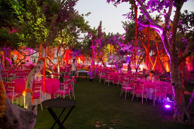 Mehta wedding by Desert Pearl Entertainment - 020