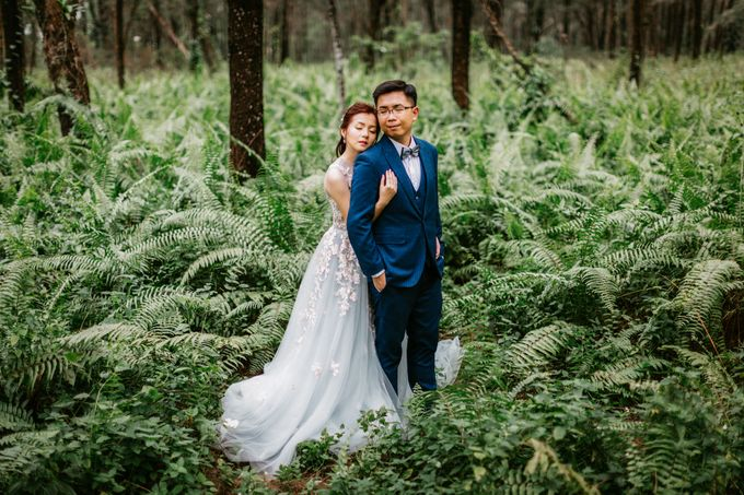 Singapore Pre-Wedding Photography by DTPictures - 010