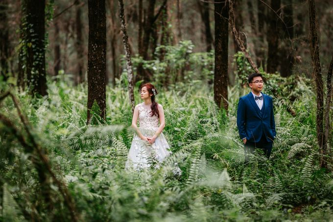 Singapore Pre-Wedding Photography by DTPictures - 009