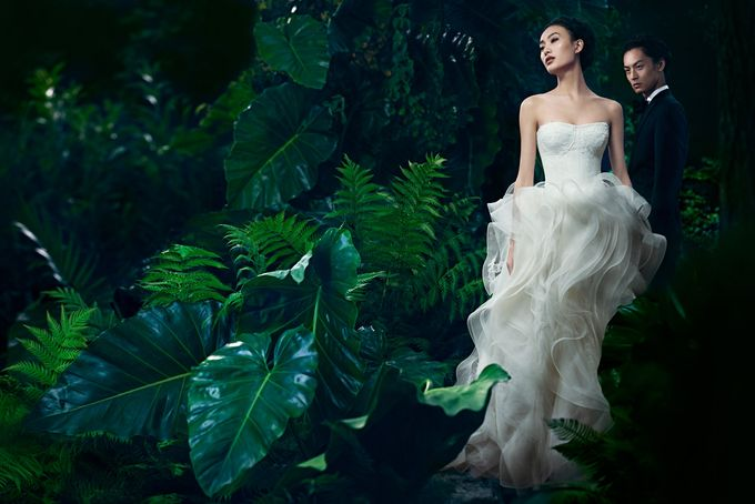 Wedding Dress Collection by The Dresscodes Bridal - 019