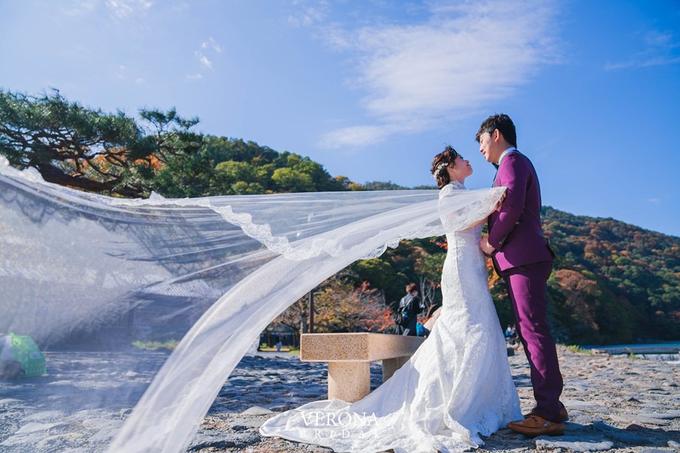 Overseas Pre-wedding by Verona Bridal - 006