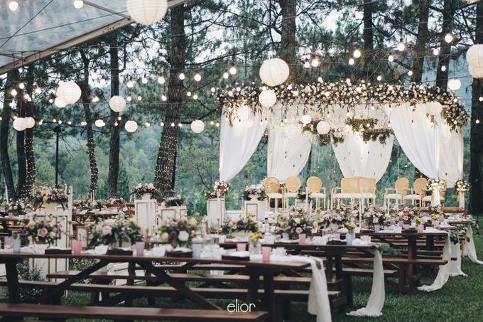 The Wedding Of Nishant & Vinutha by Elior Design - 023