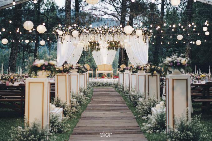 The Wedding Of Nishant & Vinutha by Elior Design - 029