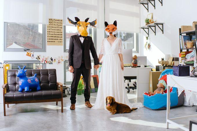 Mrs Fox & Mr Moose by The Peeping Thom - 001