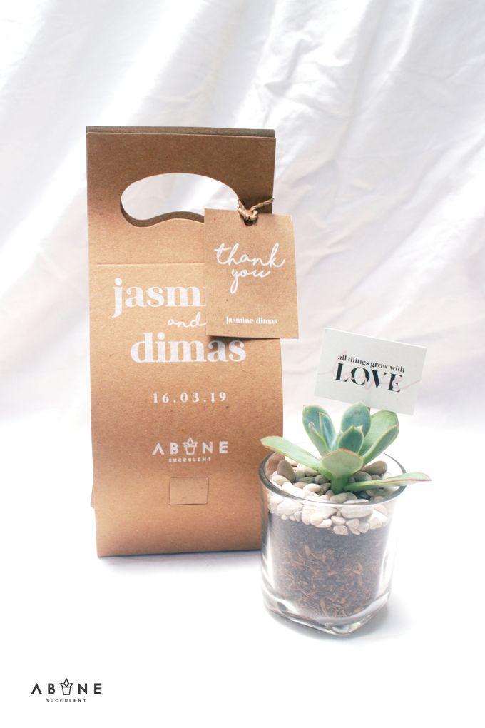 Wedding Souvenir for Dimas and Jasmine by ABANE Succulent - 003