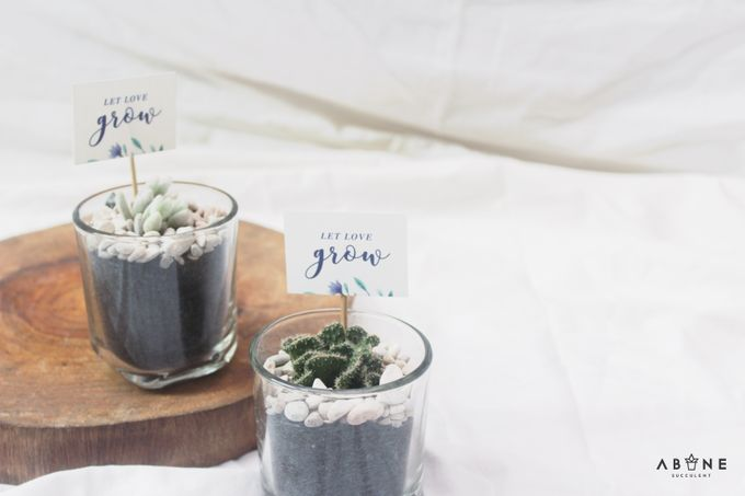 Wedding Souvenir for Kenzi and Azmi by ABANE Succulent - 003