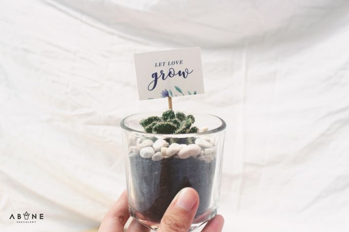 Wedding Souvenir for Kenzi and Azmi by ABANE Succulent - 005