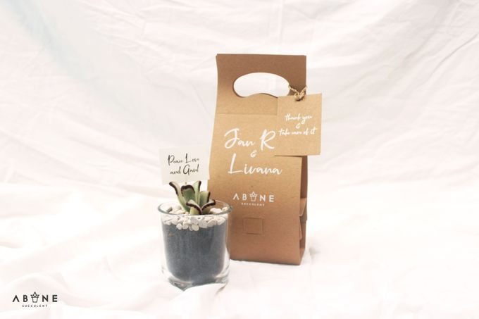 Wedding Souvenir for Jan Rico and Livana by ABANE Succulent - 003