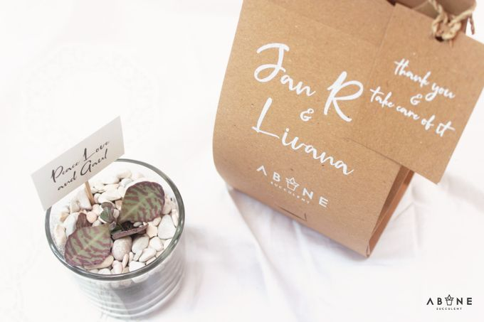 Wedding Souvenir for Jan Rico and Livana by ABANE Succulent - 005