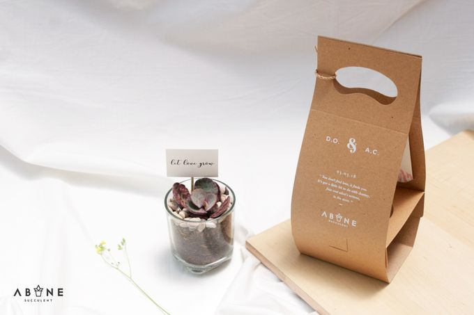Wedding Souvenir for Amanda and Dicky by ABANE Succulent - 002