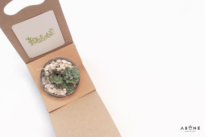 Wedding Souvenir for Melvin and Andrina by ABANE Succulent - 002