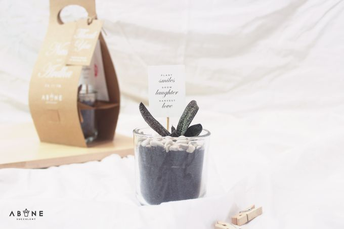 Wedding Souvenir for Nadia and Ardha by ABANE Succulent - 003
