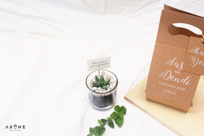 Wedding Souvenir for Sasa and Dendi by ABANE Succulent - 002