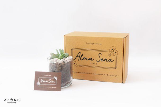 Wedding Souvenir for Alma and Sena by ABANE Succulent - 002