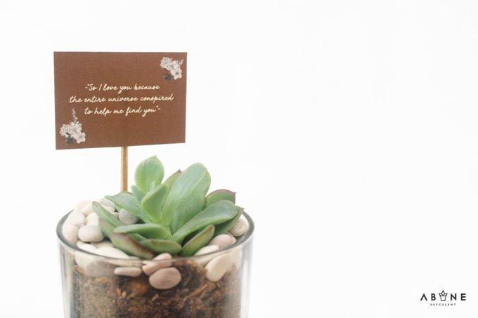 Wedding Souvenir for Alma and Sena by ABANE Succulent - 004