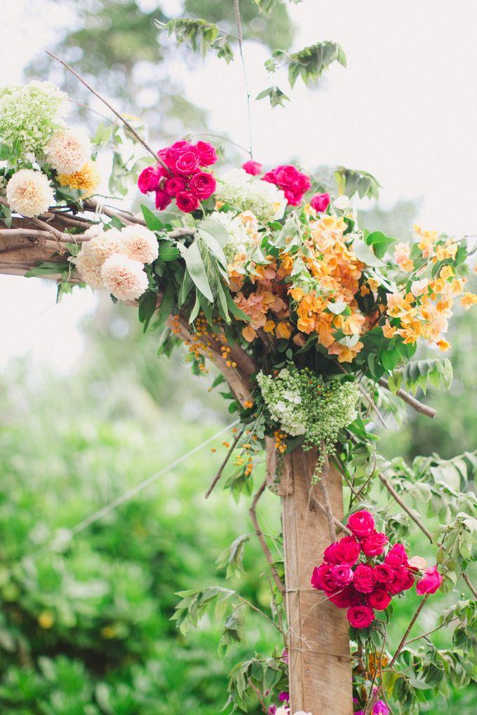 Romance Tropicali by Bloomz - 002