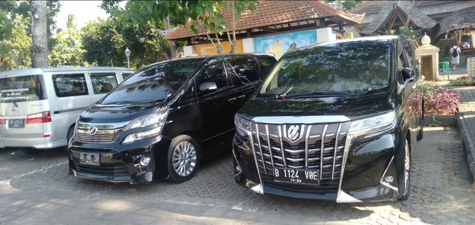 Bali Alphard Rental service by Bali Alphard Rental - 001