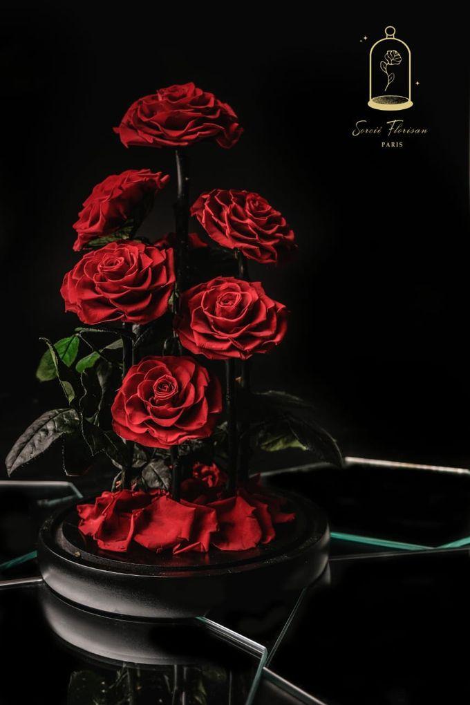 Eternal Rose by Sorcie Florisan - 001