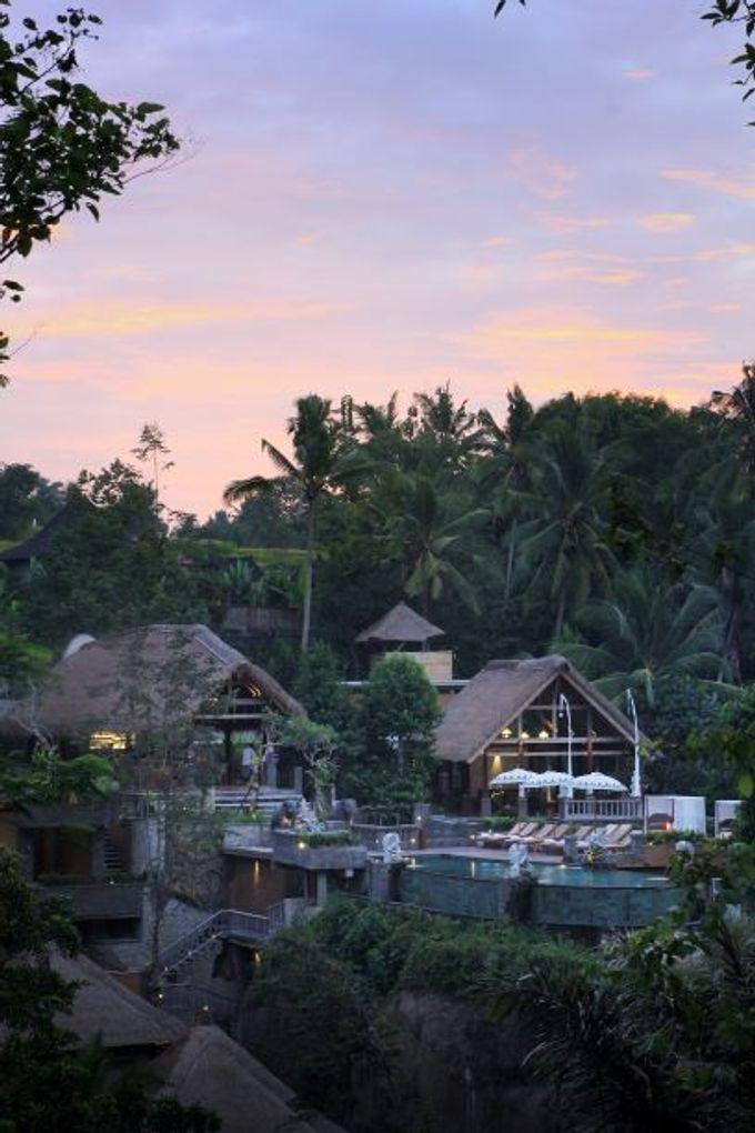 The Kayon Resort by The Kayon, Truly Ubud Resort - 013