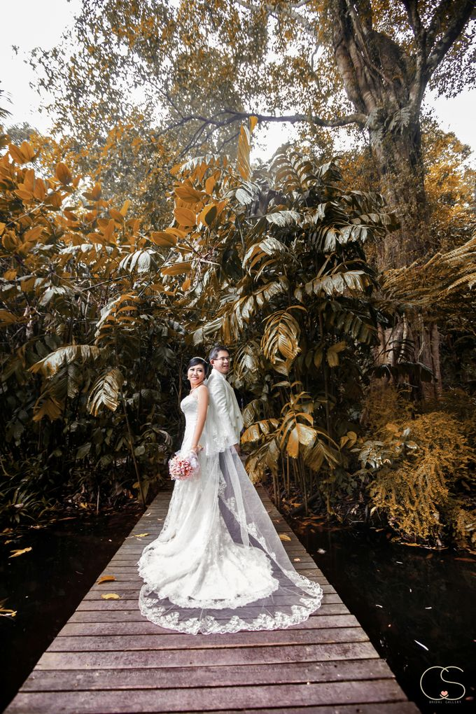 S & W by CS Bridal Gallery - 001