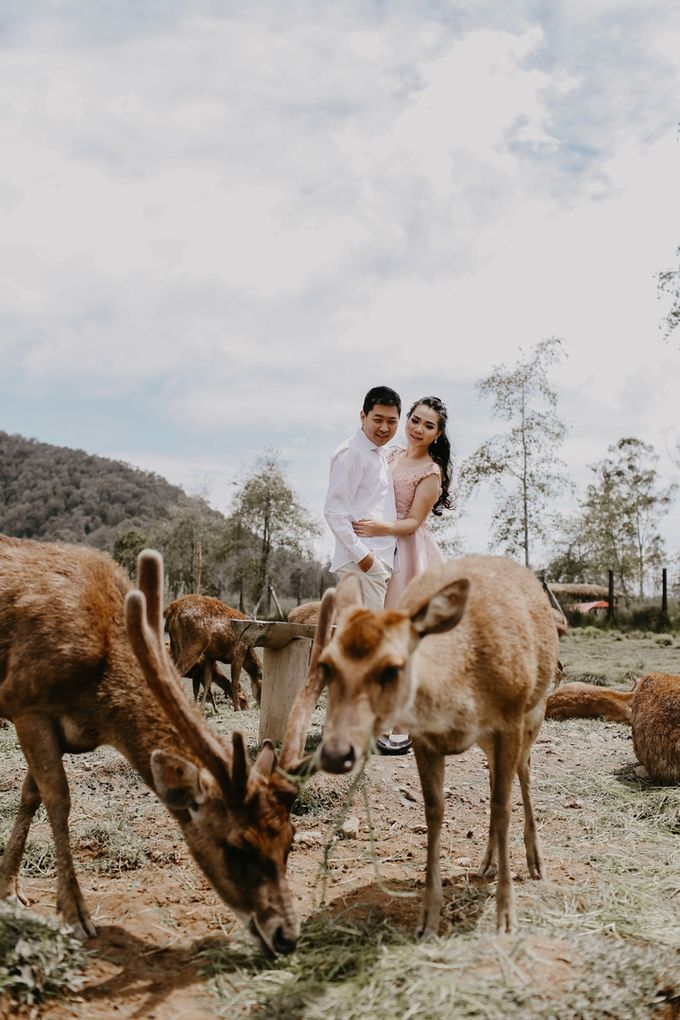 Prewedding Hendri & Ribka by WS Photography - 037