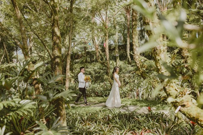 Ed & Iski by Amaryllis Boutique Resort - 009