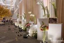 Double Tree by Hilton 2018 10 28 by White Pearl Decoration