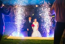 PYROTECHNIC by Bali Wedding Entertainment