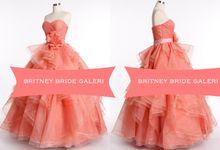 Elegant Gown by Britney Bride Galeri