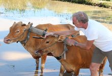 Rural Balinese Life & Farming by De Umah Bali