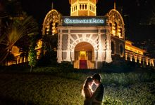 Wedding at Goodwood Park Hotel by GrizzyPix Photography