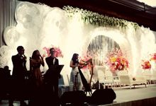 the Wedding of Nicky and Sheila by Nelson Music Entertainment