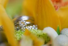 Wedding Rings by Peach Frost Studio