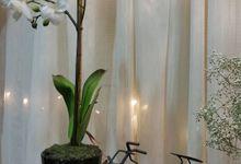 Wedding Showcase by Devereux Designs