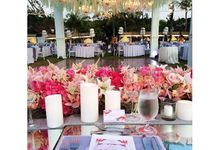 The Wedding of Steven and Stella by CDC Corp