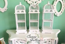 Birdcage Decoration by Canny Gallery
