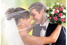 PROMO WEDDING 2018 NEW ALPHARD 2016/2017 by SENTOSA JAYA VIP WEDDING CARS SURABAYA