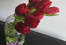 Tulip Fair by biancoflowerjkt